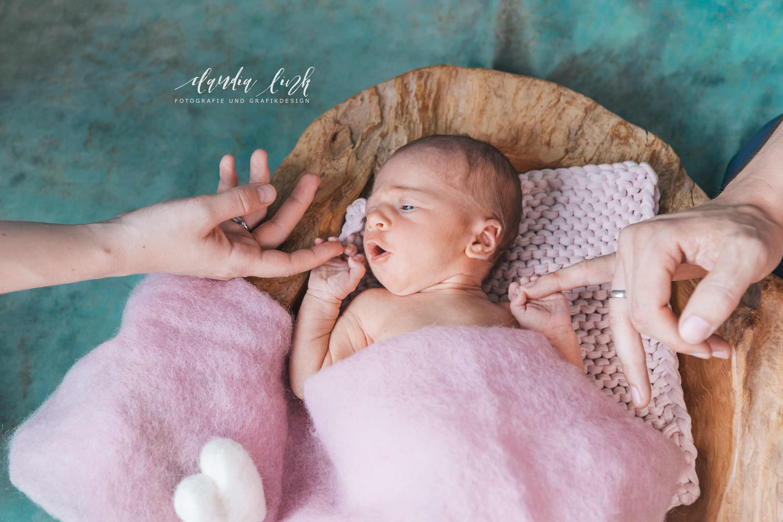 Babyfotos in deinem Zuhause IMG 3786w