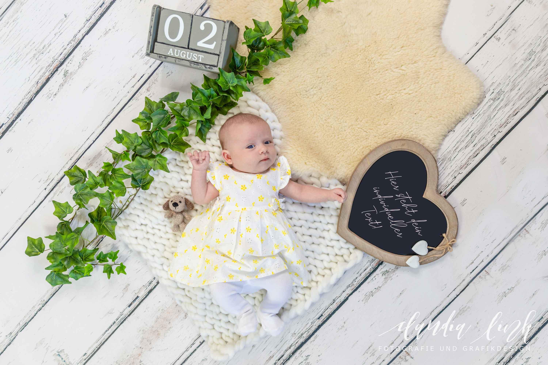 Babyfotos mit knuffigen Assistenten IMG 2706w