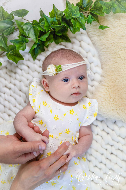 Babyfotos mit knuffigen Assistenten IMG 2744w