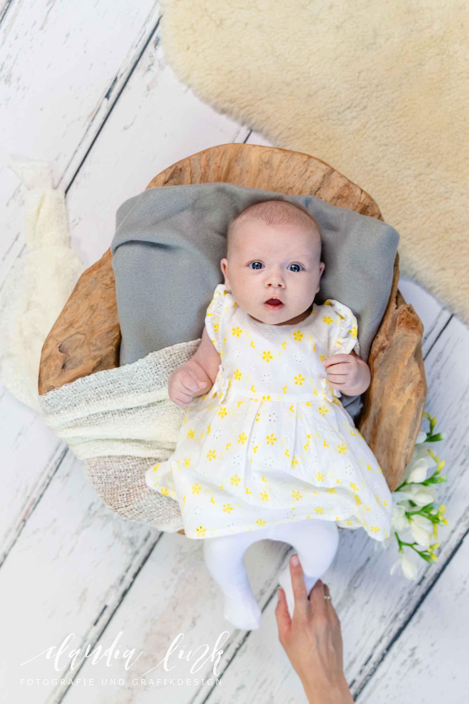 Babyfotos mit knuffigen Assistenten IMG 2780w