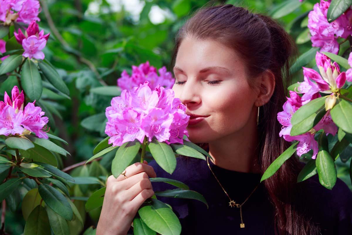 Portraitshooting mit Blumenbokeh und einem Gast IMG 9411w