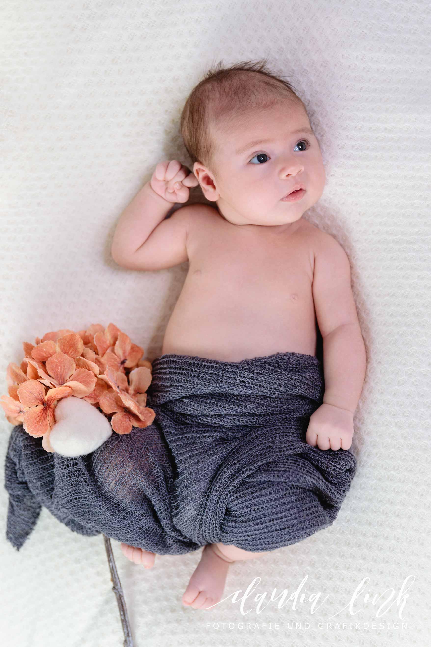 Kreative Babyfotos mit weihnachtlichen Accessoires IMG 5360web