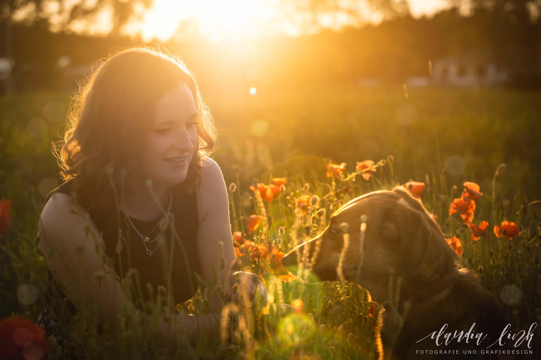 Hund, Katze, Pferd - Tierfotografie IMG 2062w