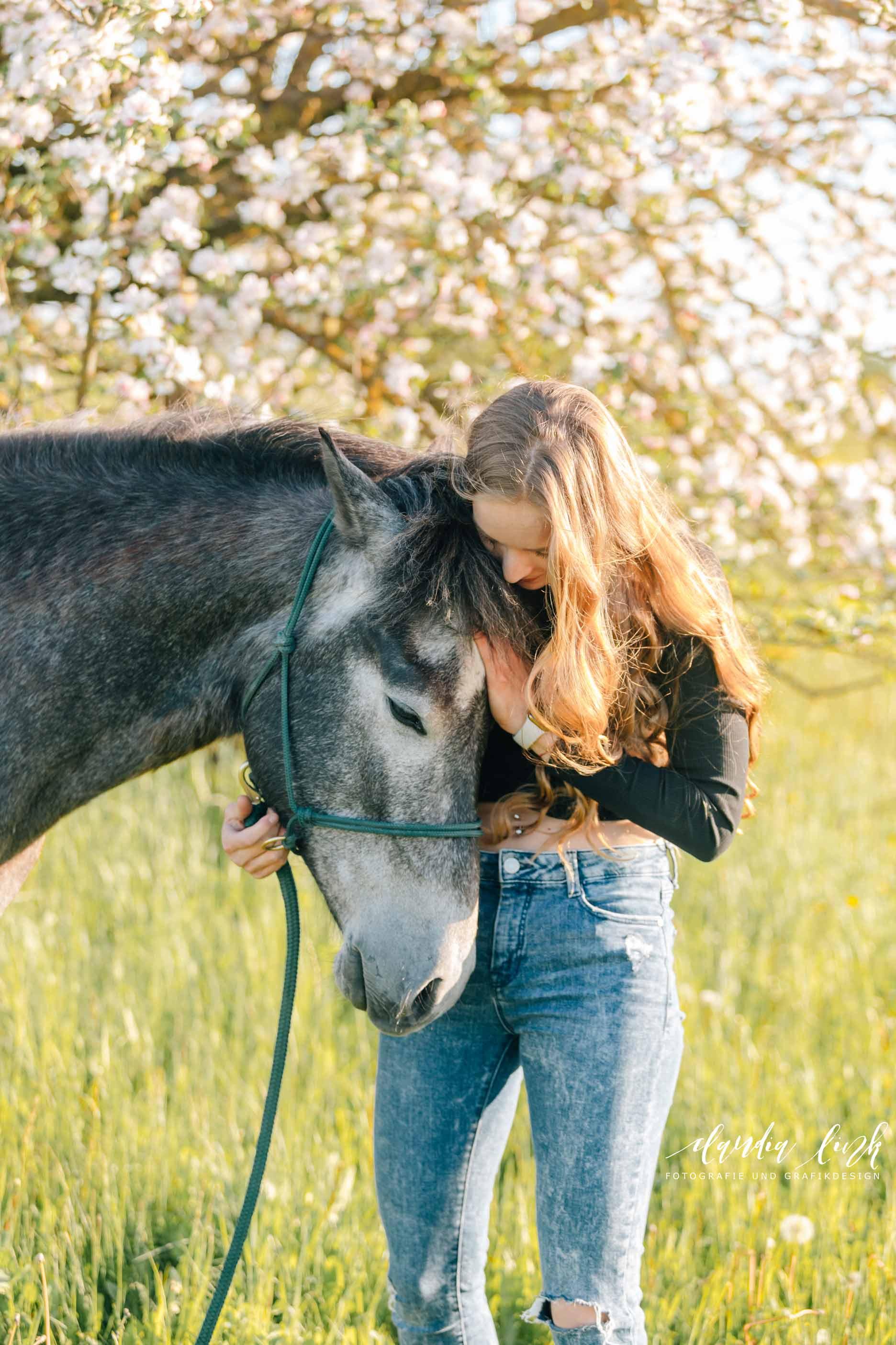 Sommerliches Pferdeshooting bei Sonnenuntergang IMG 8280w