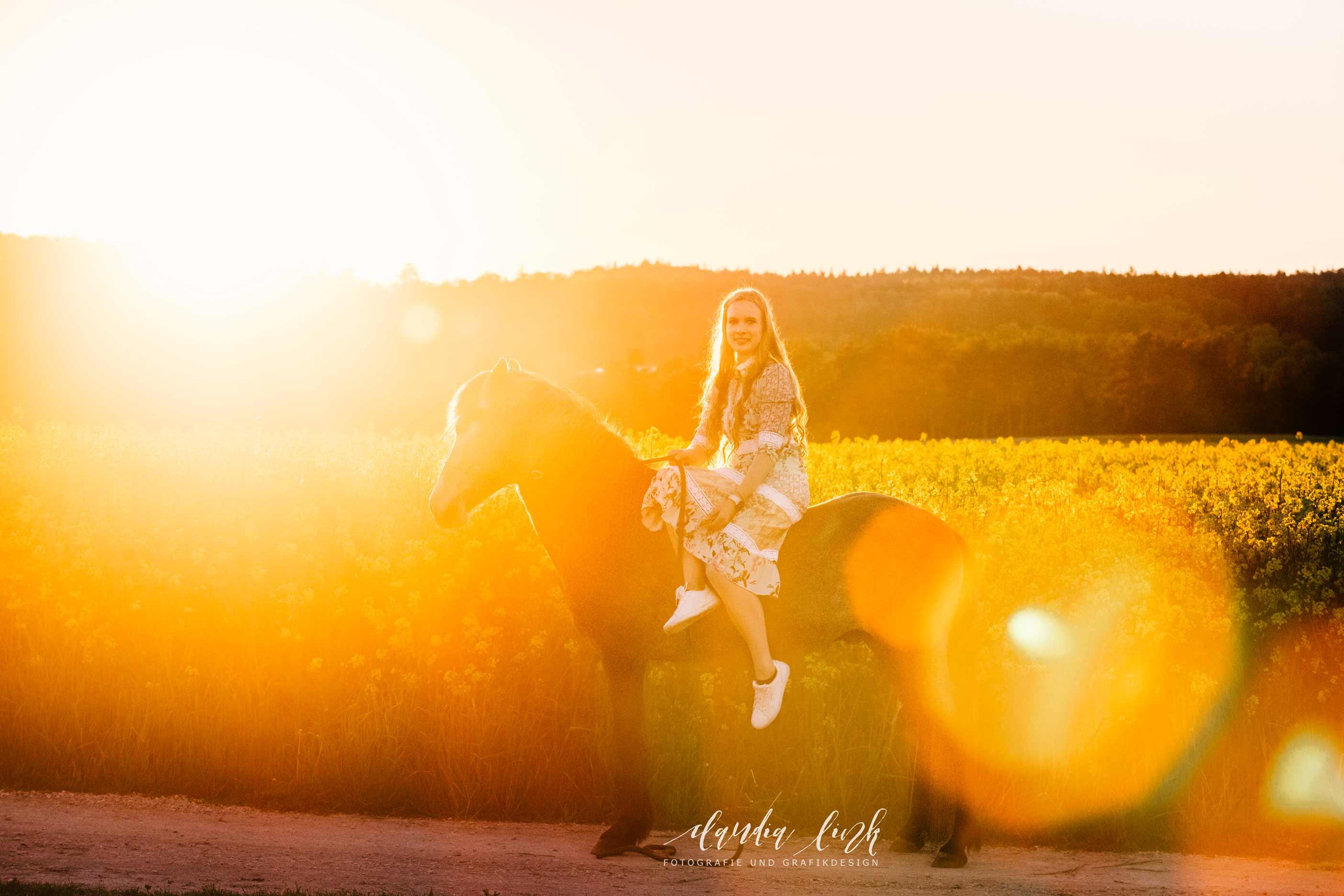Sommerliches Pferdeshooting bei Sonnenuntergang IMG 8840w