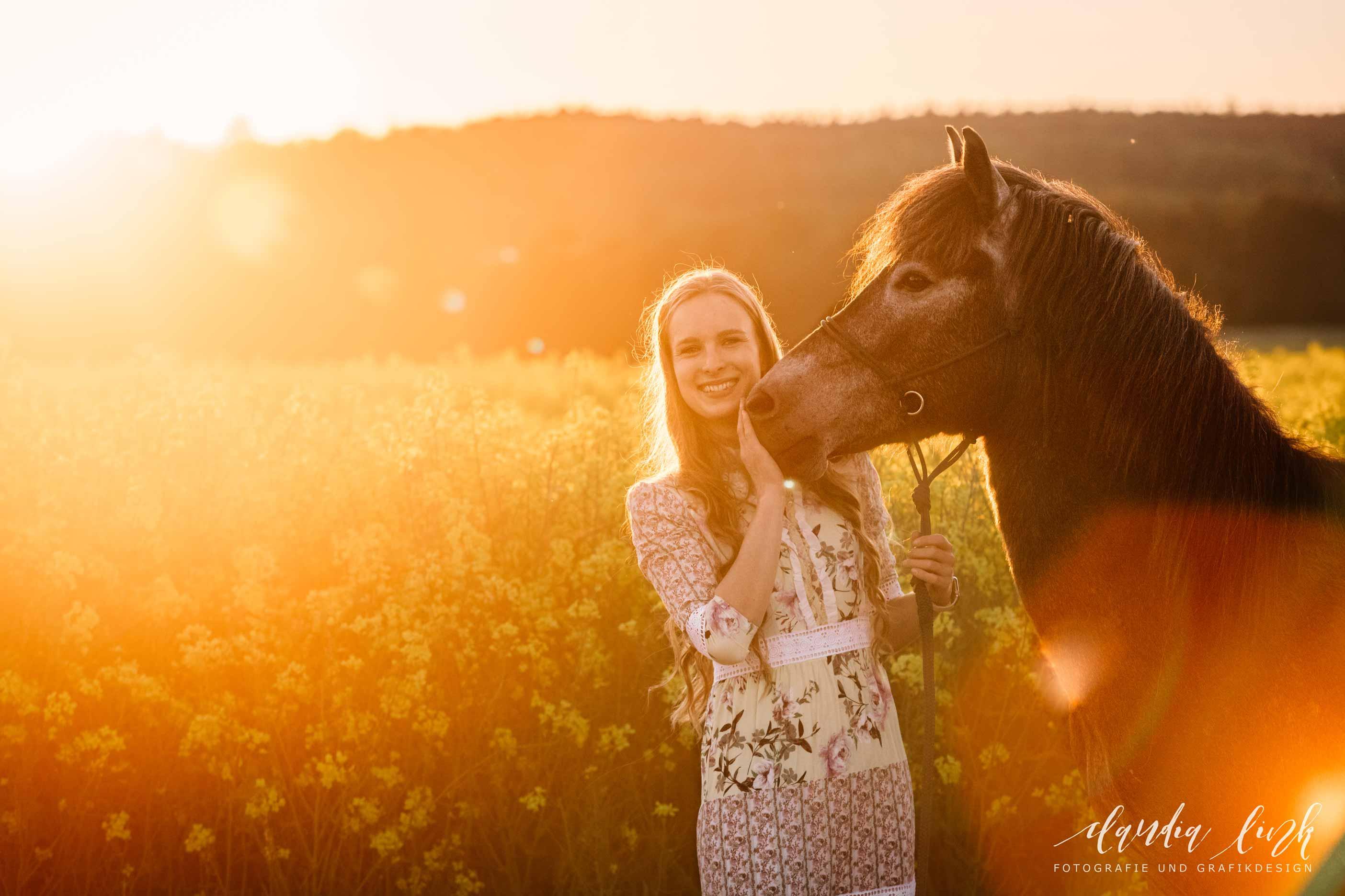 Sommerliches Pferdeshooting bei Sonnenuntergang IMG 8887w