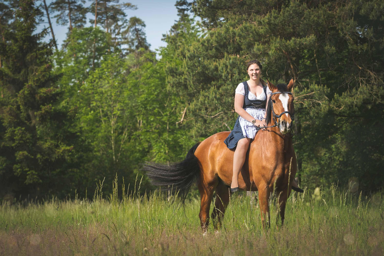 Pferdeshooting im Wald und auf der Heide IMG 1366w